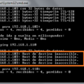 Soporte Técnico para Redes de Datos